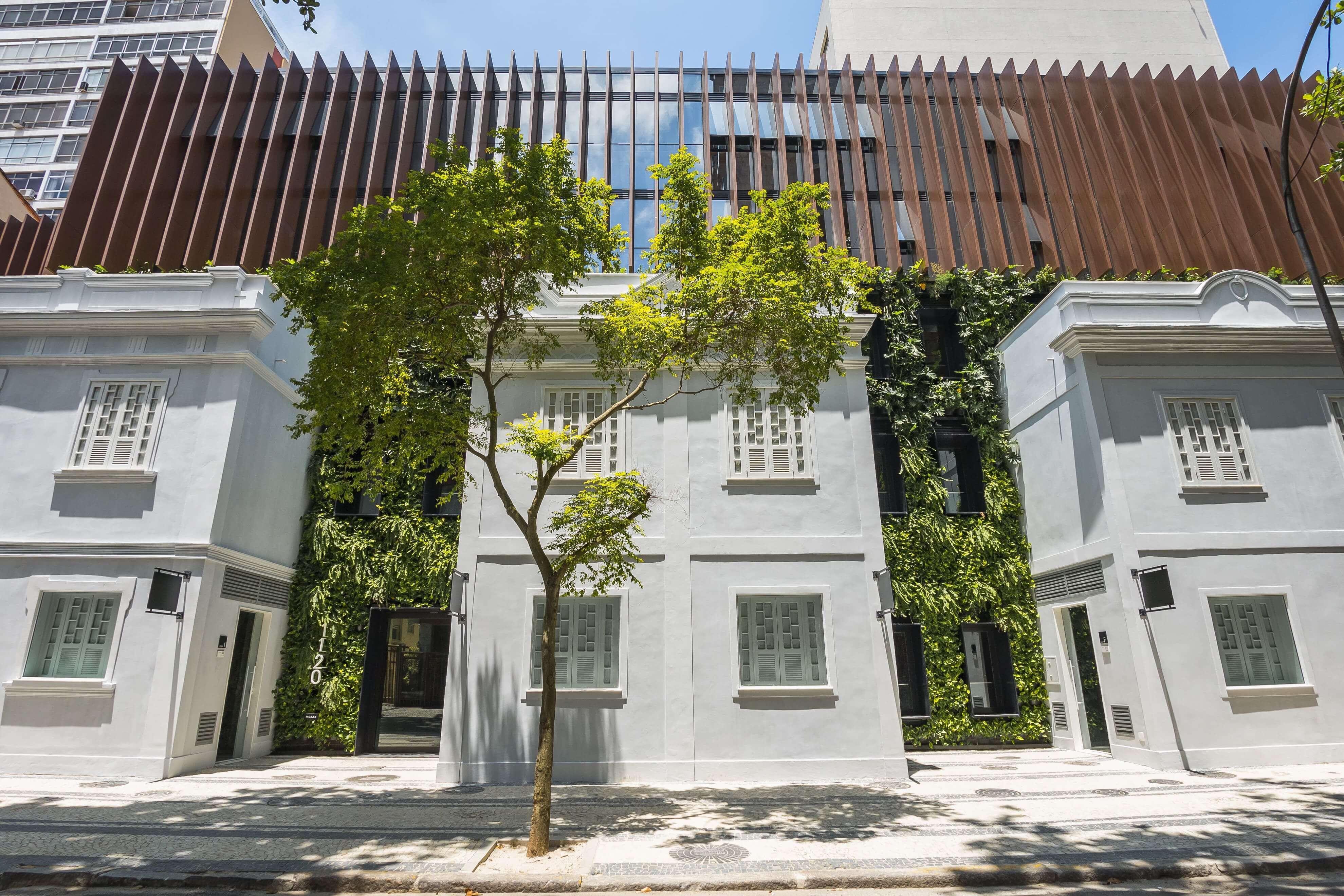 Capa Jardins verticais humanizam as construções.